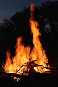 mulga_campfire
