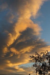 Friday_sunset