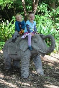m_t_ride_elephant